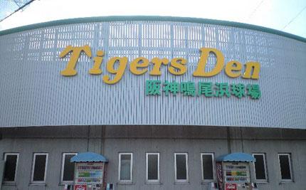鳴尾浜球場練習見学